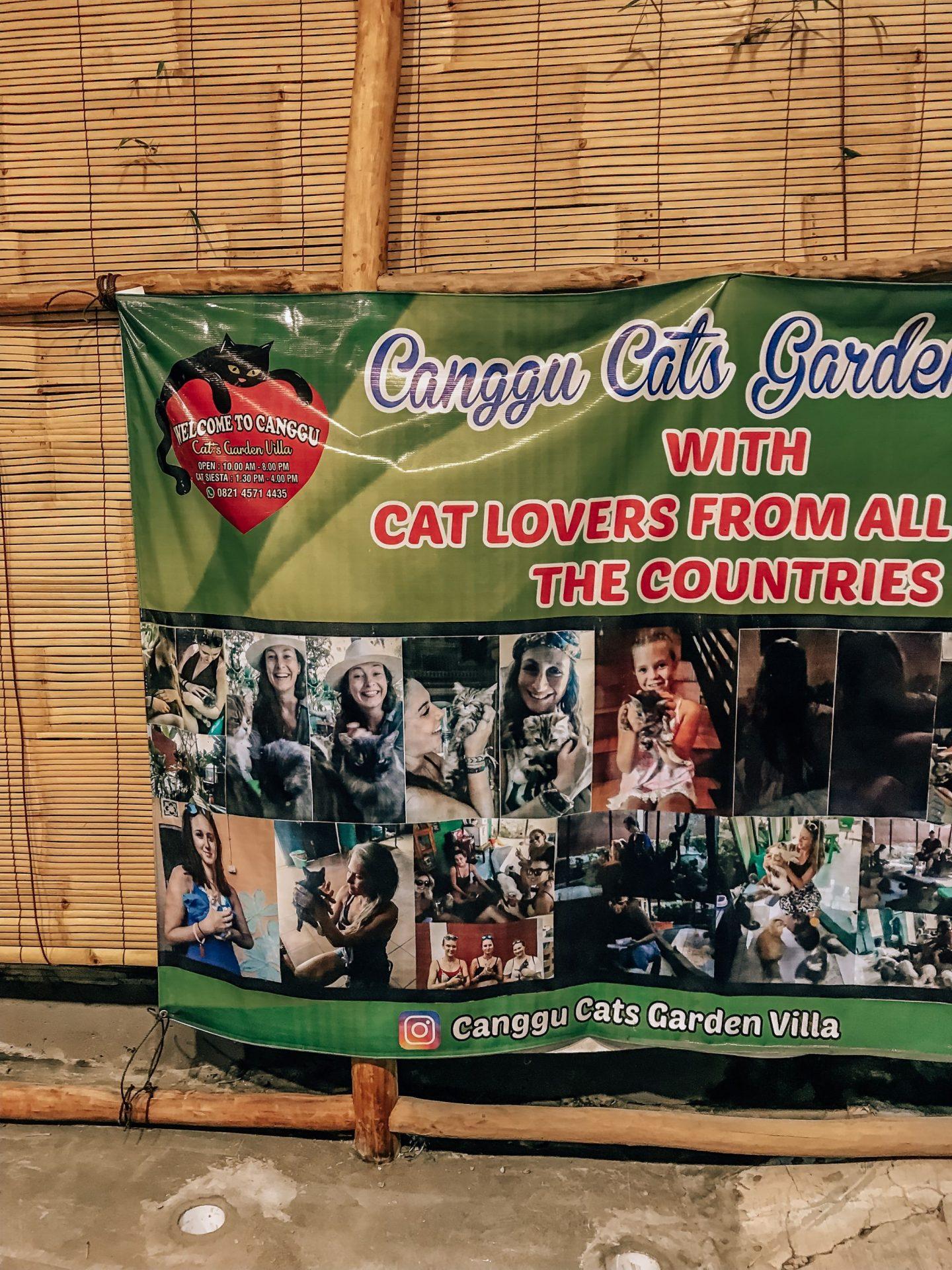 Canggu Cat Village & Gardens Canggu Bali Indonesia